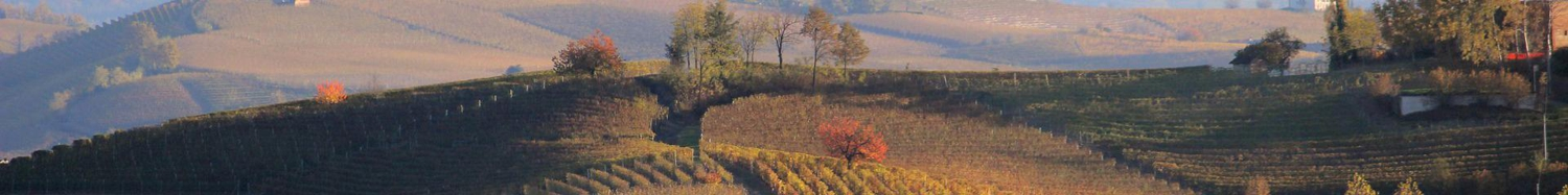 Red Langhe